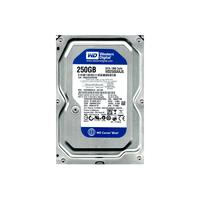 250Gb WD2500AAJS CaviarBlue SATA-II 7200RPM, 300MB/sec, 8MB cache